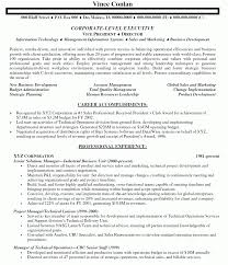 Beautiful Information Technology Manager Resume Images Entry