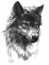 Wolf Head Tetování Vargtatueringar Tatuering A Varg
