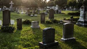 ilration for article titled hundreds of bos are missing from a tennessee cemetery