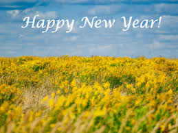 Happy New Year 2019 Wishes Greetings Whatsapp Status Messages