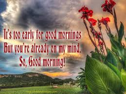 Early Good Morning Quotes Best of CUTE GOOD MORNING TEXTS Beautiful Messages