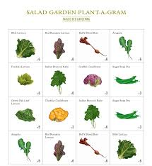 Square Foot Garden Plant Spacing Chart What Is Square Foot Gardening My Green Space Grow Your