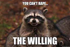 You Can't Rape... the willing - Evil Plotting Raccoon - quickmeme via Relatably.com
