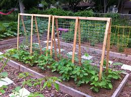 Small Picture Top 7 Gorgeous Garden Trellis Projects Nifty DIYs