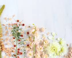 Flower Aesthetic Computer Wallpapers ...
