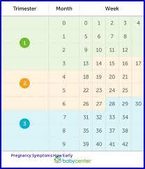Calendars For Pregnancy Baby Calendar Week By Week 5 Blank Invoice