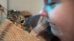 Japanese woman breast feeding cat
