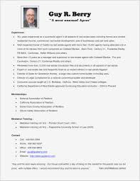 collection agent resume real estate agent resume no experience pdf format business document