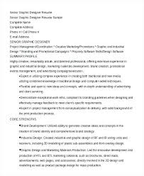 Graphic Resume Examples Web Graphic Designer Free Resume Samples ...