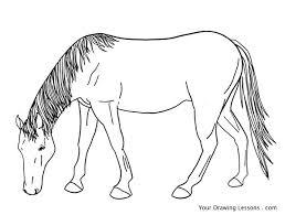 Kleurplaat Paardenkop Paardrijden Kleurplaat Kleurplaten Printen Op