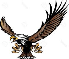 hawk clipart. Wonderful Clipart Hawk Clipart Eagle Hd Coopers Mascot Design Picture Transparent Inside Clipart A