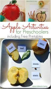 Apple Activities For Preschoolers Science Free Printables