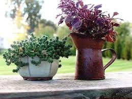 Download Vegetable Garden Container Ideas  Solidaria GardenContainer Garden Design Plans