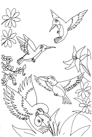 Small Picture Free Printable Hummingbird Coloring Pages For Kids Hummingbird