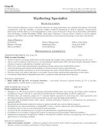 Executive Resume Writers Services Review Education Policy In How To