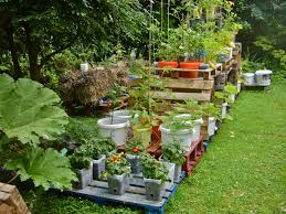 container gardening for beginners. Innovative Decoration Container Ve Able Garden Ideas Gardening Beginners For
