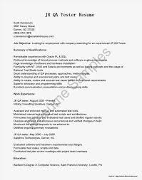 Selenium Testing Resume Sample Resume Selenium Experience Danayaus 19