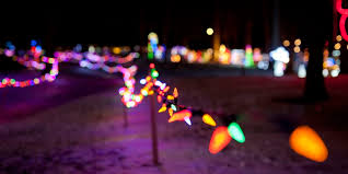 pictures of lighting. Uxbridge Fantasy Of Lights To Light Up Elgin Park Dec. 10 Through Jan. 1 | DurhamRegion.com Pictures Lighting