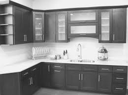 fullsize of cool small black cabinet kitchen frosted glass kitchen cabinet doors frosted glass kitchen cabinet