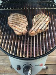 overall the char broil patio bistro has met our needs most everything that we were looking for in a smaller grill