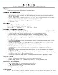 Good Resume Summary Examples Lovely Resume Summary Examples From Od Stunning Good Resume Summary