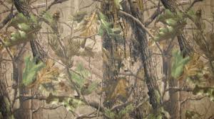 Realtree Camo Wallpaper For Iphone ...
