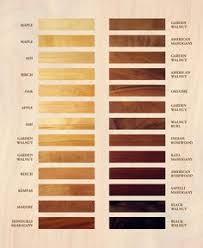 Wood Species Chart 394 Best Wood Types Images Wood Species Wood Types Of Wood