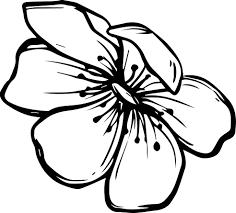 Tổng hợp những bức tranh tô màu hoa đẹp nhất - Tranh Tô Màu cho bé