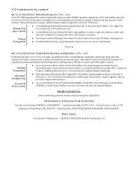 Executive Summary Example Resume Sarahepps Com