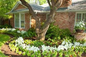 Small Picture dallas area backyard design Landscape Design and Installation