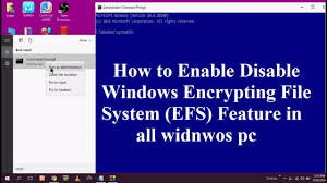 how to enable disable windows encrypting file system efs feature you