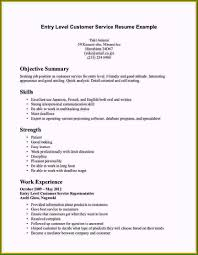 Good Objective Statements For Entry Level Resume What Is A Resume Summary Fantastic Entry Level Resume