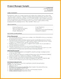 Project Management Resume Templates Extraordinary It Manager Resume Template Project Cv Example Pdf U48