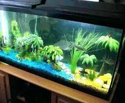 fish tank stand design ideas office aquarium. Fish Tank Designs Design Ideas Home Aquarium With 4 Stand Office