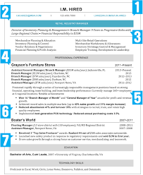 How Should A Professional Resume Look The Amazing How Should A Professional Resume Look Format Web 5