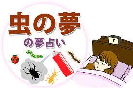虫 が たくさん 出 て くる 夢