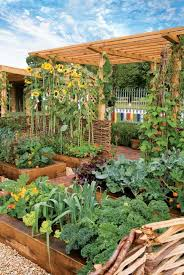 intensive gardening grow more food in less space with the least work