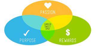 Find Your Career Find Your Career Sweet Spot Career Faqs