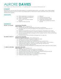 Carpenter Resume Templates Carpenter Resume Skills Resume Templates Finish Carpenter Carpenter 77