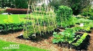 small vegetable garden small veggie garden ideas small vegetable garden ideas small vegetable garden planning how