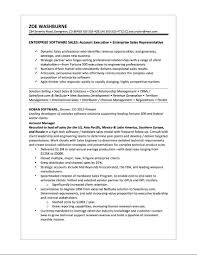 Software Sales Resume Examples Free Resume Example And Writing