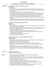 Management Analyst Resume Example Identity Access Management Analyst Resume Samples Velvet Jobs 32
