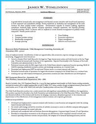 Senior Internal Auditor Resume Sample New Internal Auditor Senior