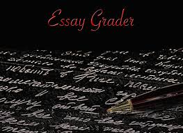 essay grader android apps on google play essay grader screenshot
