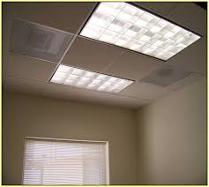 fluorescent light covers office