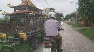 Kẻ câm điếc sát hại bé trai 11 tuổi ở Nam Định có thể đối mặt án phạt nào?