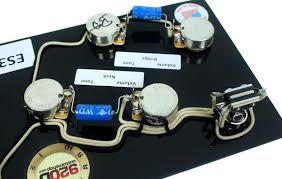 prewired es 335 wiring harness for gibson cts switchcraft pio gibson 335 electronics at Pre Wired 335 Harness