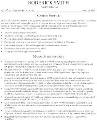 Mckinsey Resume Sample Consulting Resume Samples Template Business