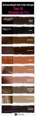 Copper Brown Hair Color Chart Schwarzkopf Hair Color Range Top 10 Shades For Indian Skin