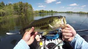 Neponset Reservoir Depth Chart Kbf Big Bass Fishing In My Kayak Neponset Reservoir Foxboro Ma